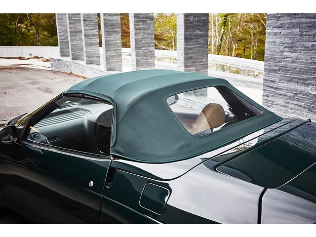 「ロータス」「エラン」「オープンカー」「山梨県」の中古車7