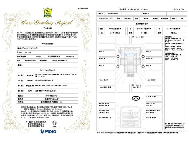 「その他」「フォワード」「トラック」「栃木県」の中古車10