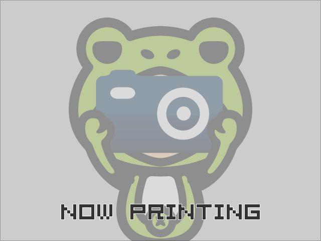 「日産」「ティアナ」「セダン」「栃木県」の中古車